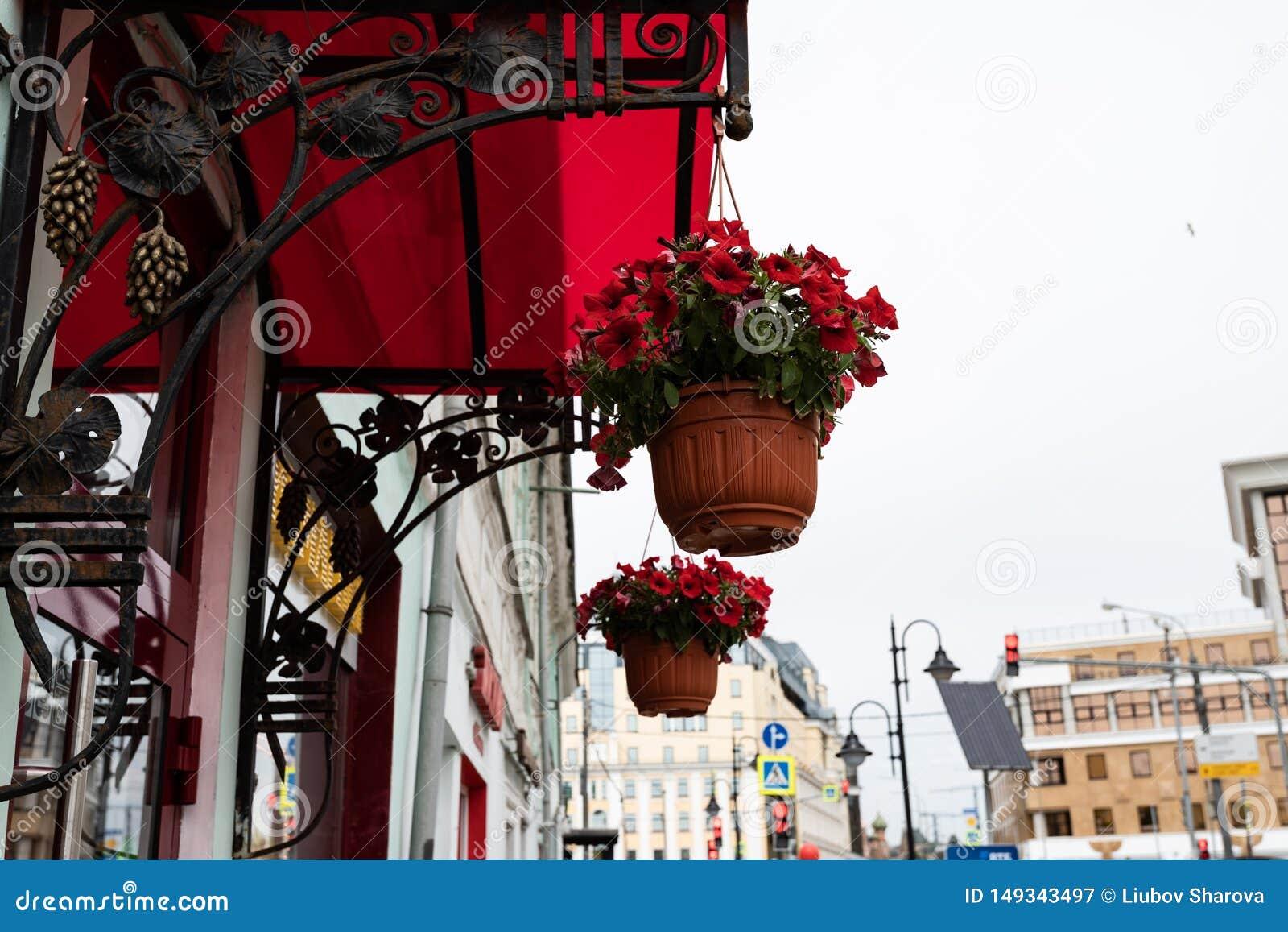 Elemento di paesaggio urbano Modello bronzeo in ferro battuto del baldacchino sopra la porta, il tetto rosso luminoso ed i fiori