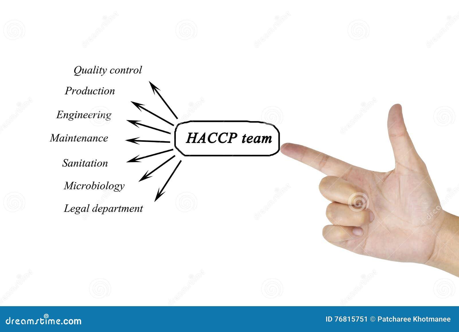 Elemento di scrittura della mano delle donne del gruppo di HACCP per il concetto di affari