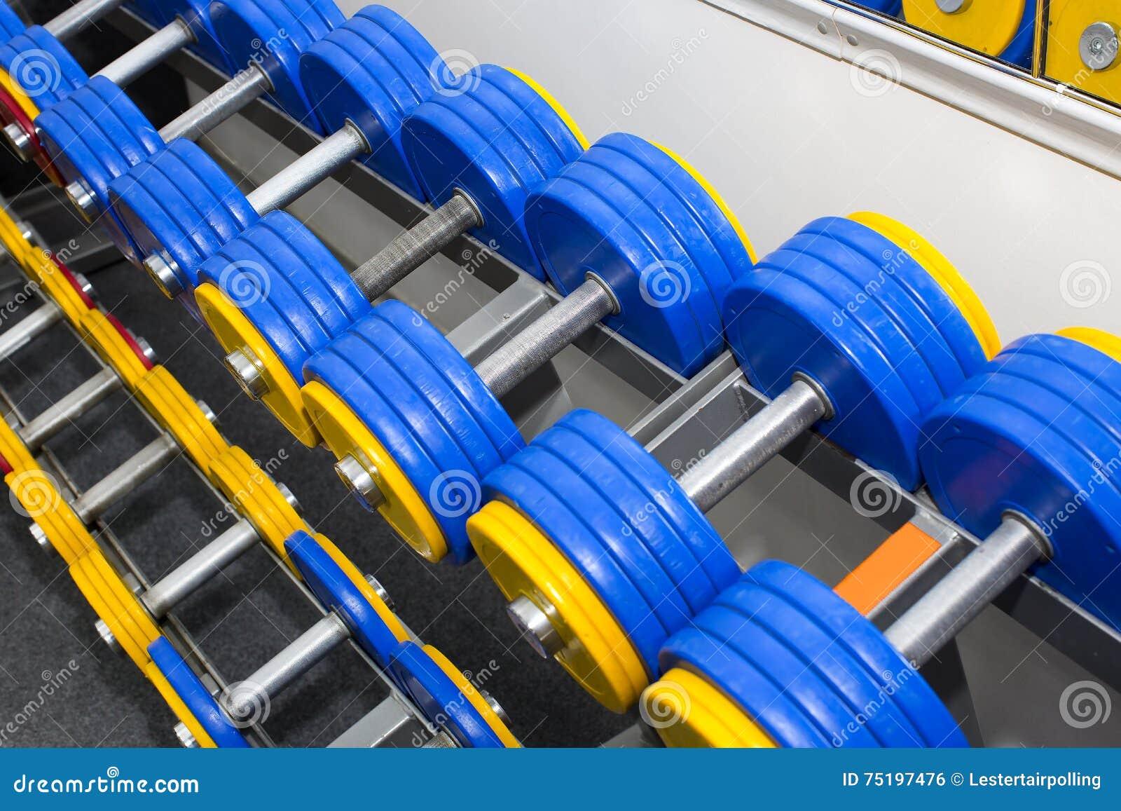 Elementos do equipamento do gym