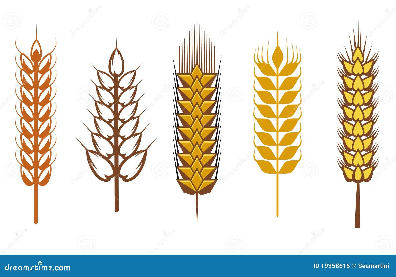 Elementos do projeto do cereal