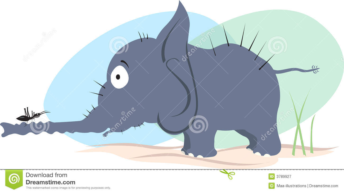 elephant and ant royalty free stock photography image lion face clip art blank lion face clipart outline