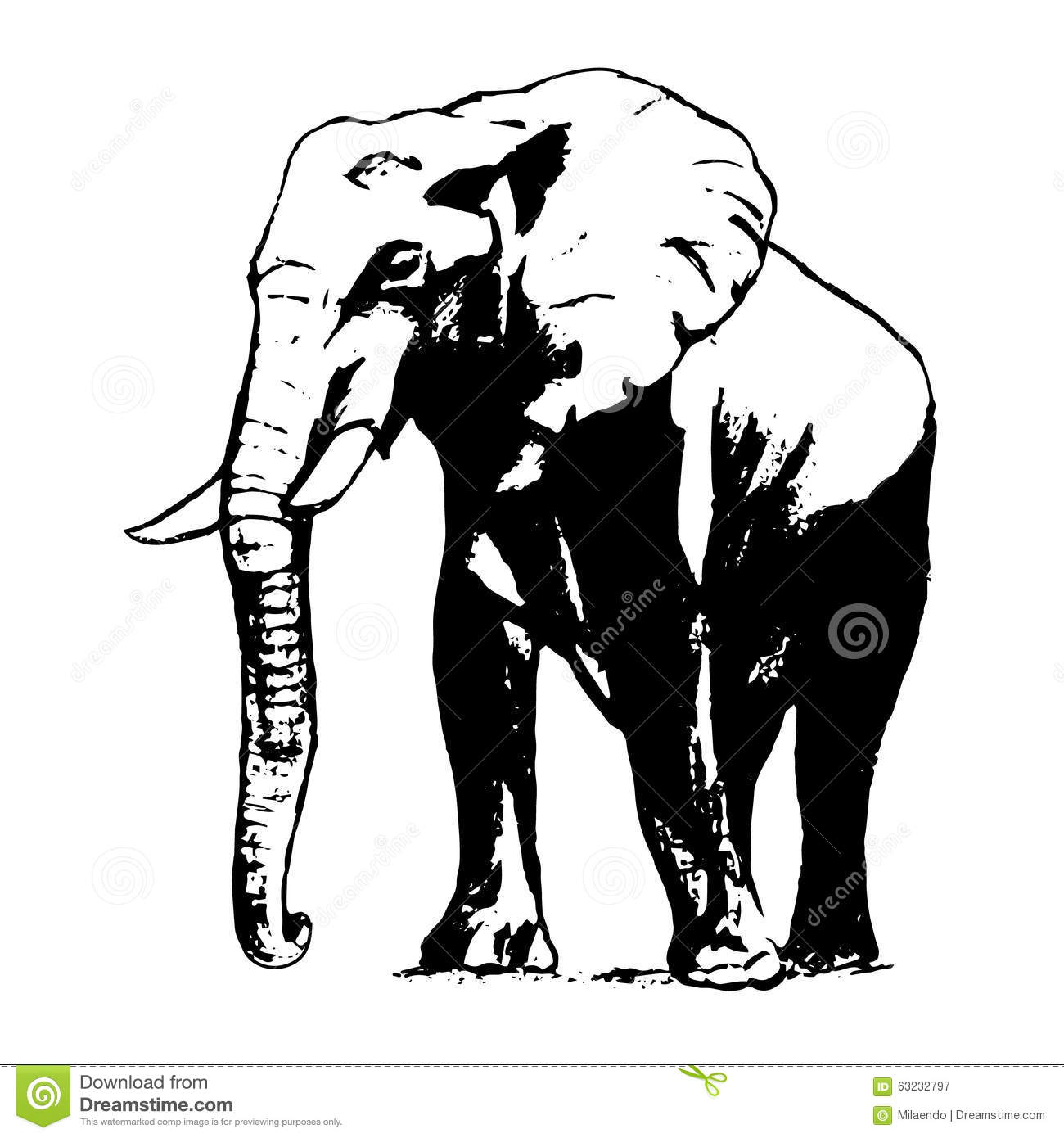 Elephant In Black And White, The Graphic From The Hand