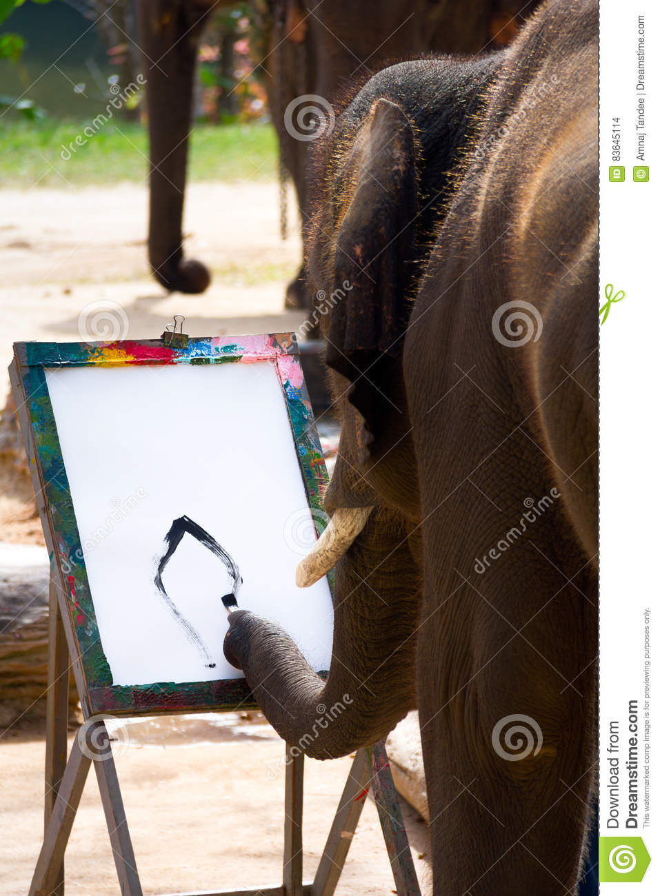 Elephant drawing painting by trunk