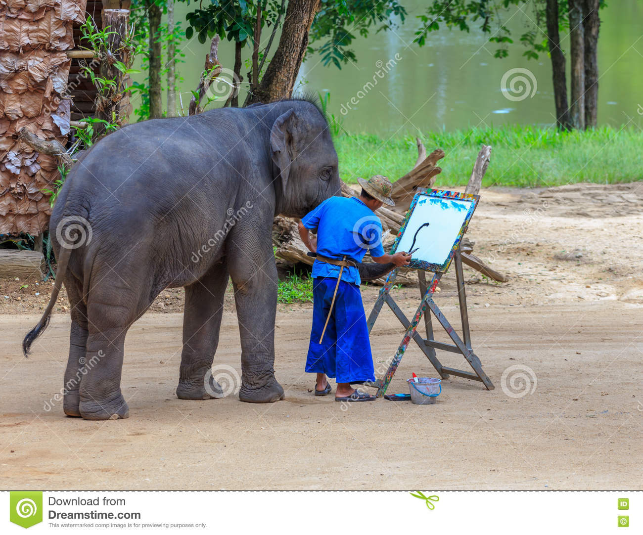 Elephant drawing show