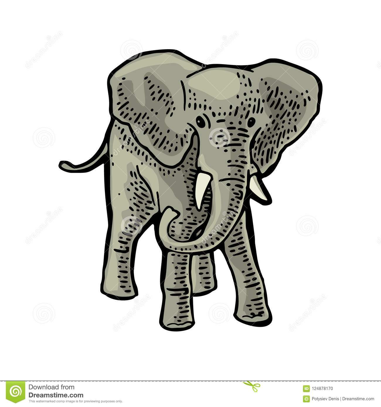 Elephant. Engraving Vintage Vector Color Illustration. Isolated On ...