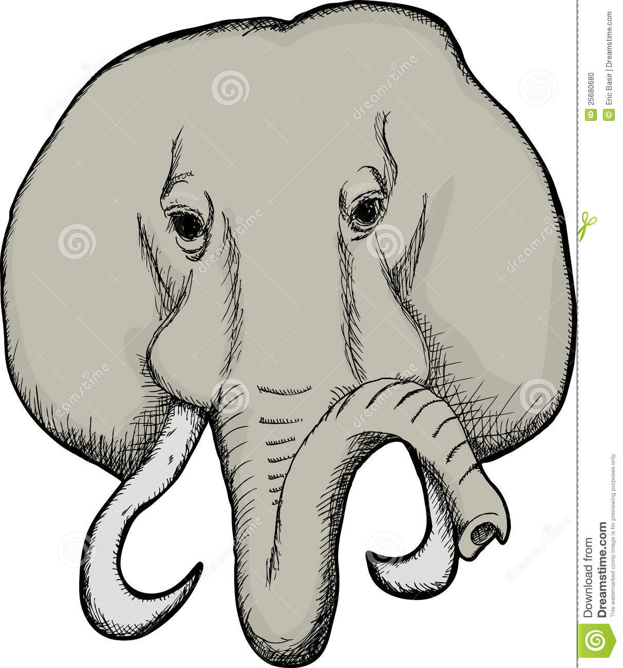 Elephant Face Clip Art Elephant face