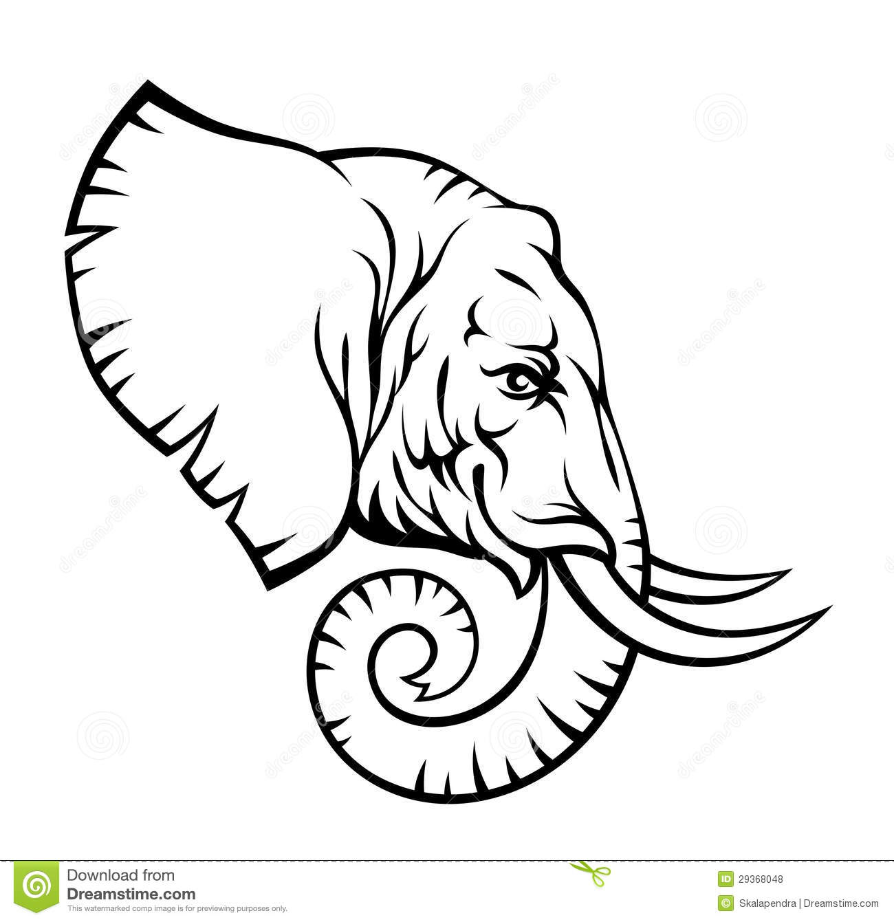 Elephant Head Stock Vector Illustration Of Beast Outline