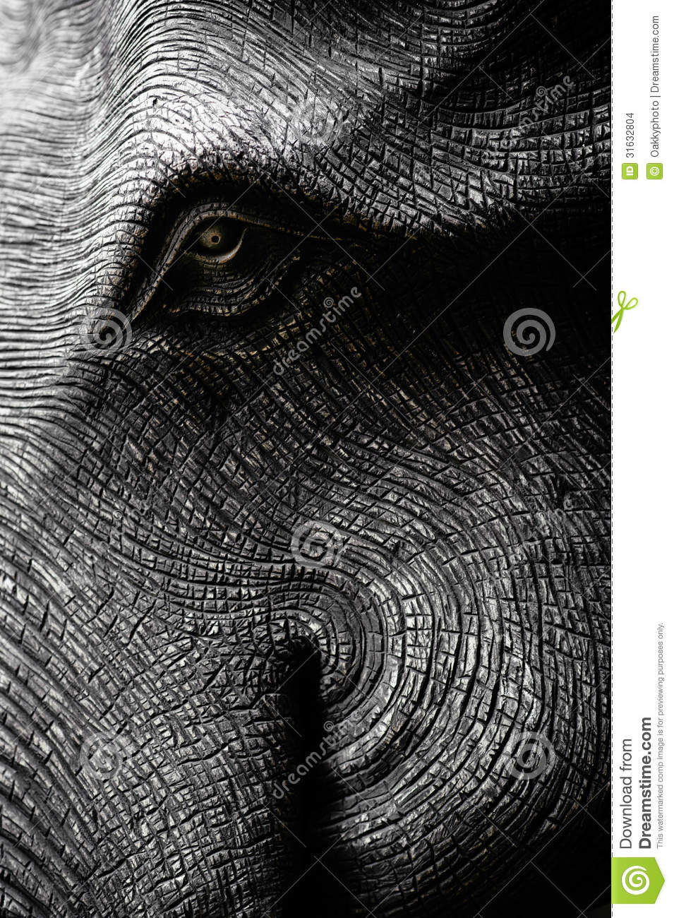 Elephant Head in Black and White