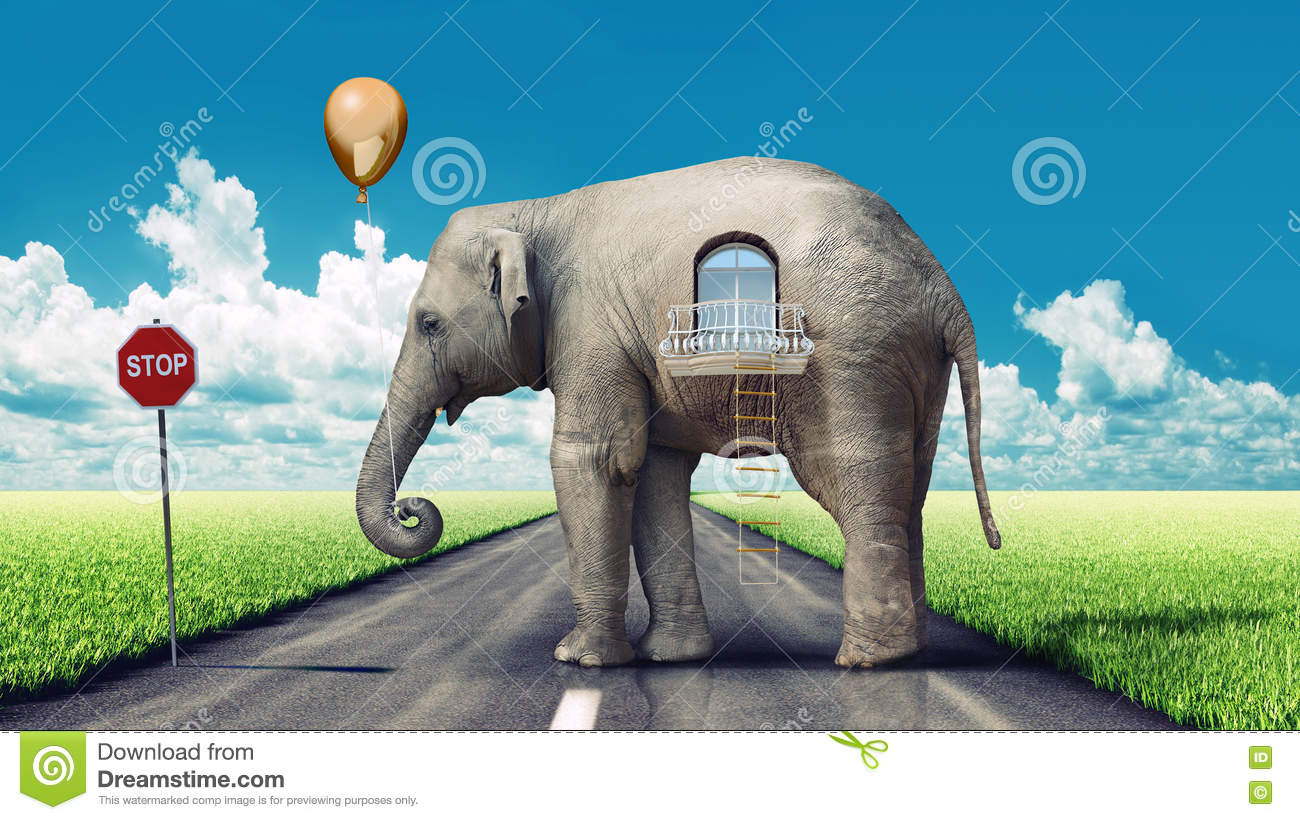 Elephant House On The Road Stock Illustration Of