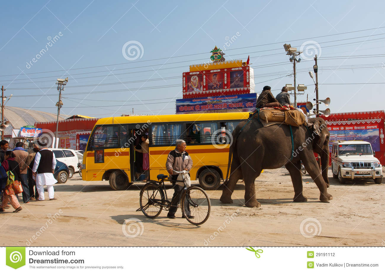 Animals Like Elephant King Kong Tiger Singing Wheels On The Bus Go ...