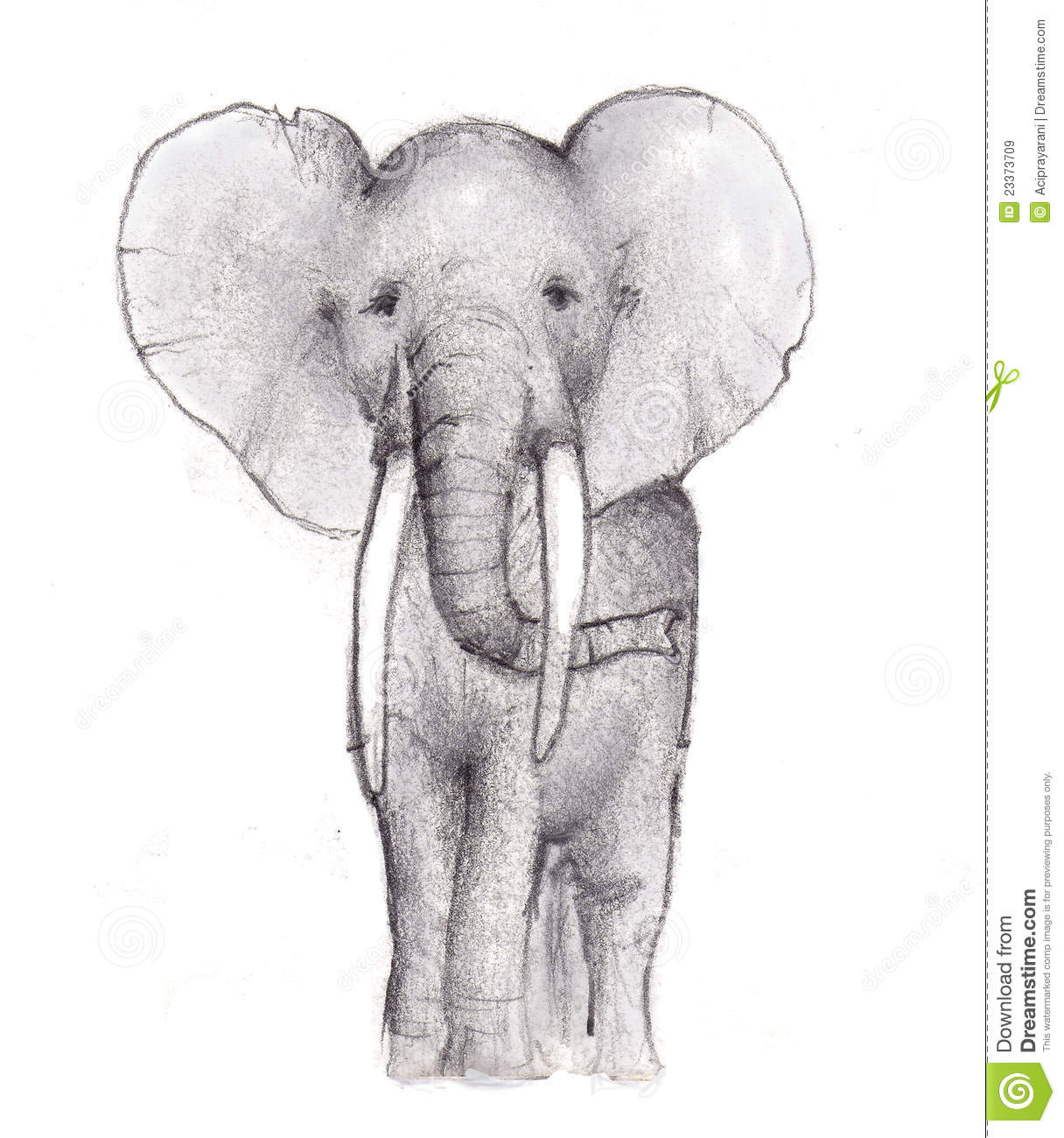Elephant Pencil Sketch Royalty Free Stock Images - Image: 23373709