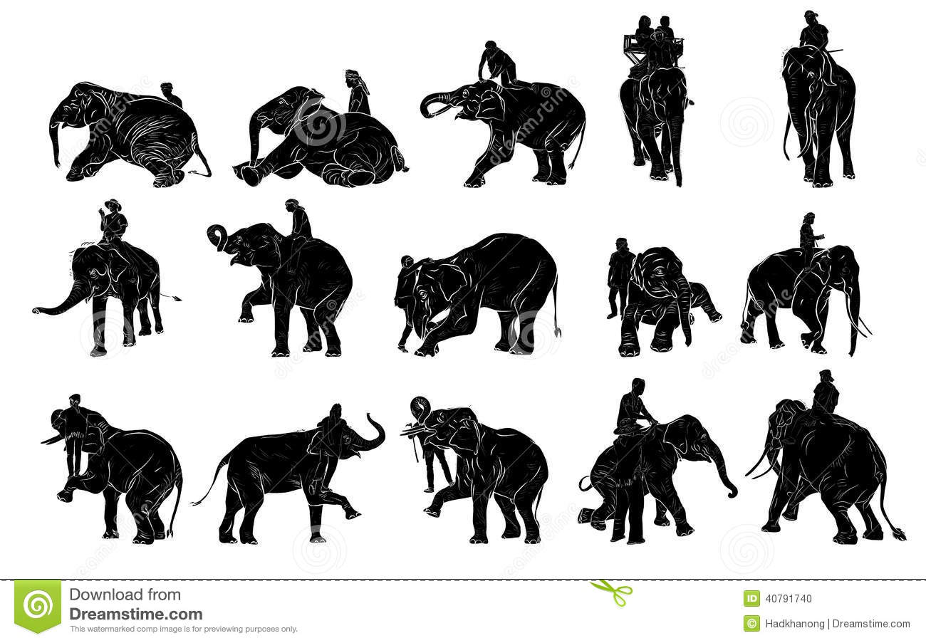 Elephant Show And Training With Mahout Stock Vector - Image: 40791740