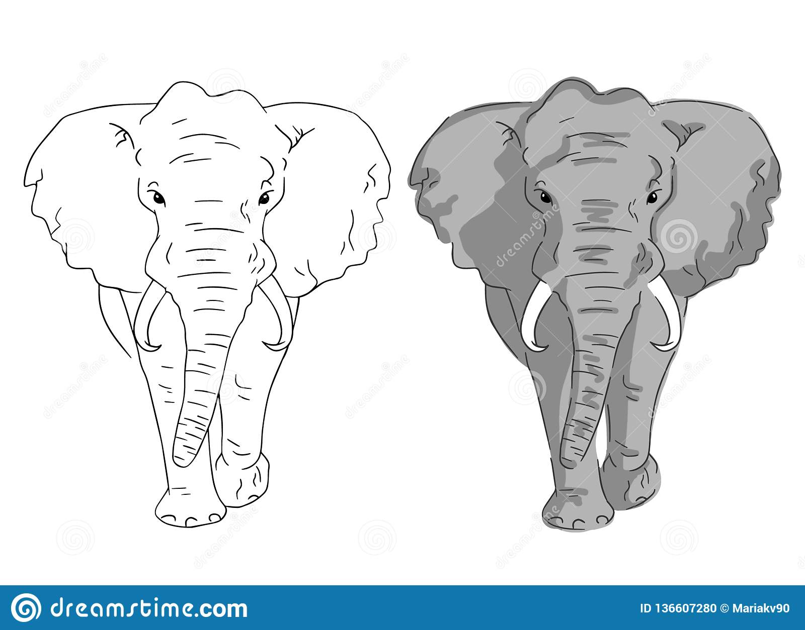 - Elephant Sketches In Color And Lines. Simple Elephants On White