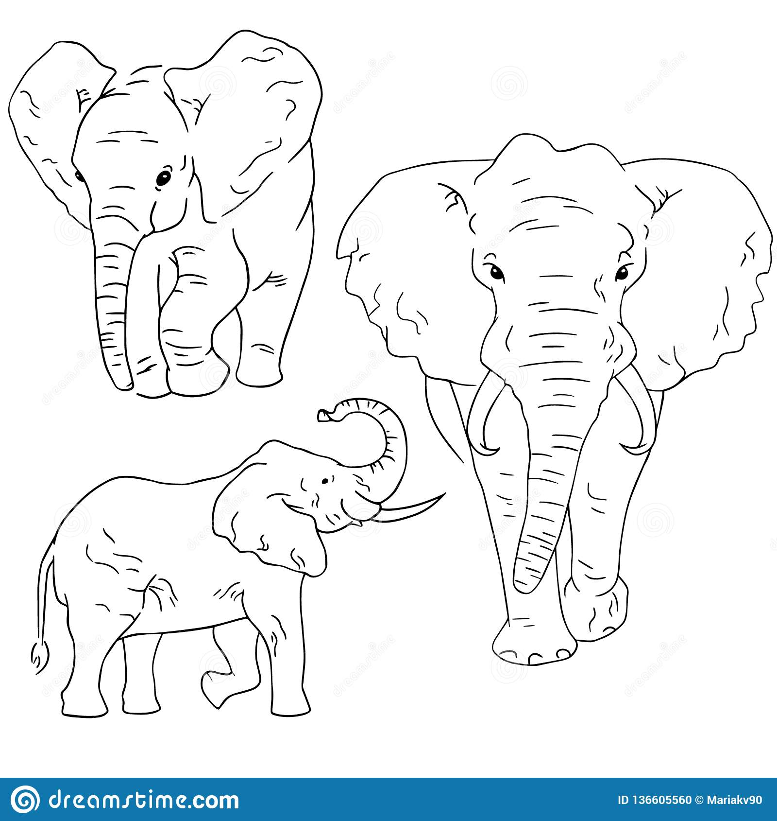 Elephant sketches on white background. Set of sketching animals drawn by freehand