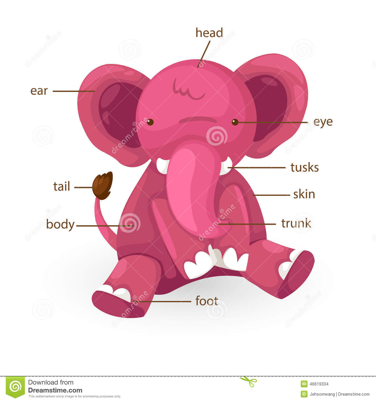 Illustration Of Elephant Vocabulary Part Of Body Stock Vector ...