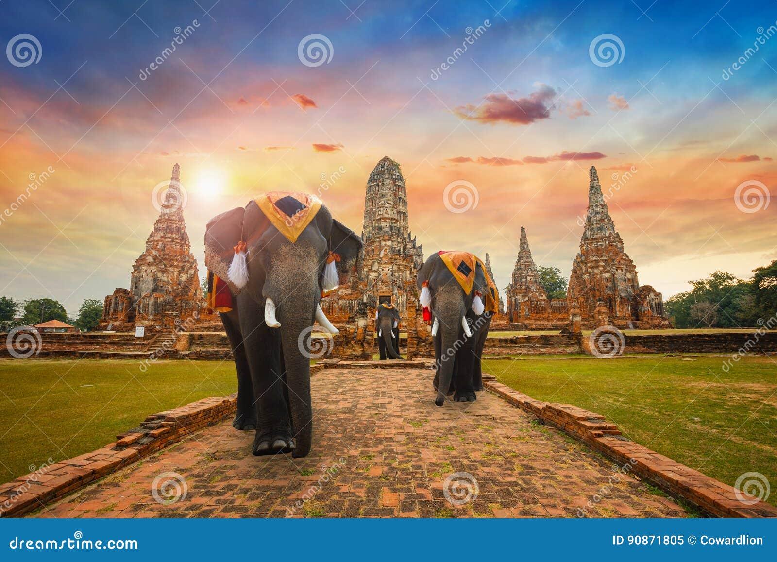 Elephants at Wat Chaiwatthanaram temple in Ayuthaya