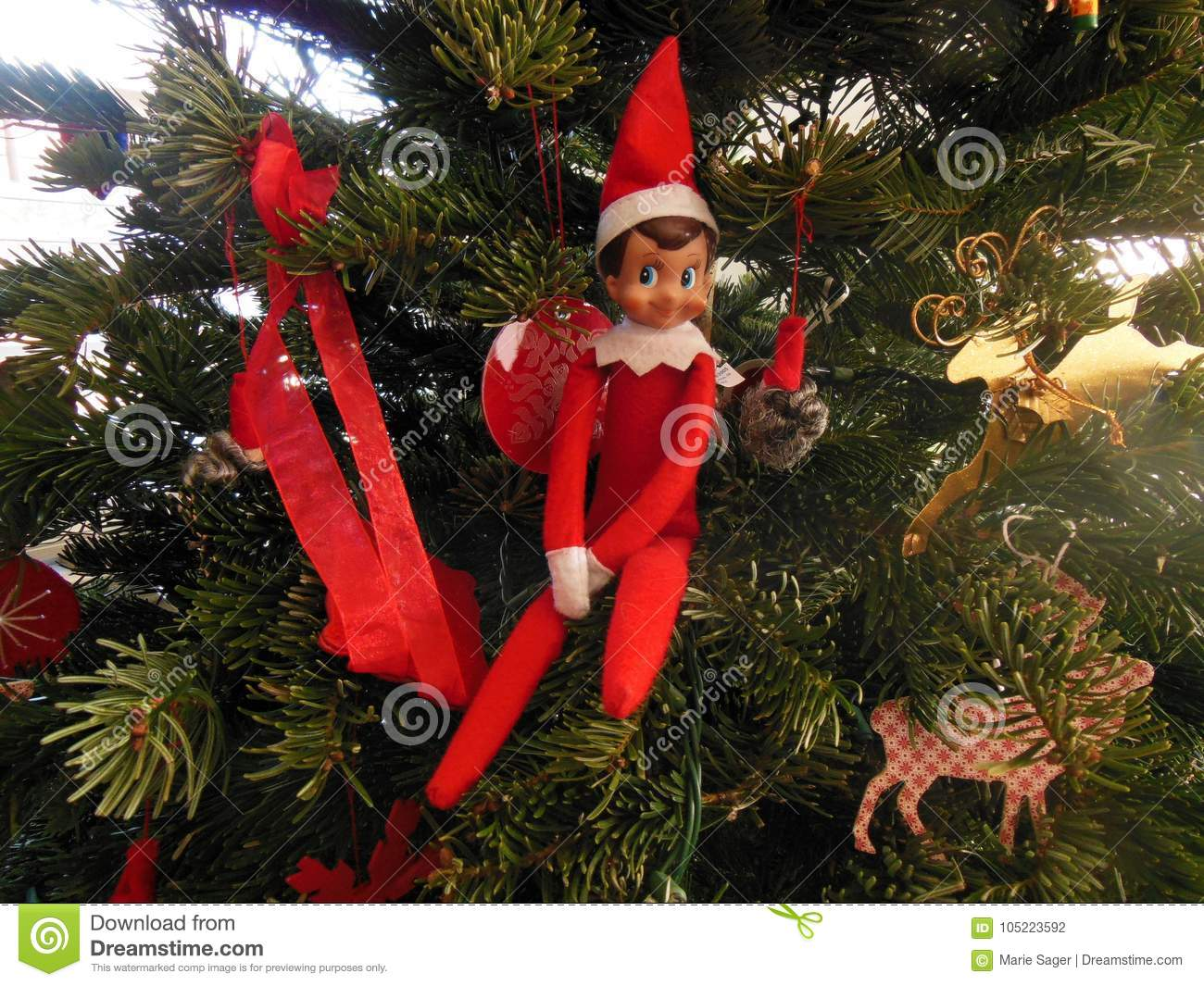Elf Stock Photos Royalty Free Stock Images