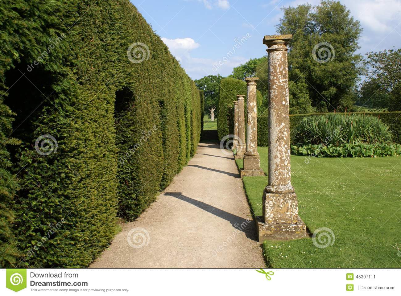 Garden Pathway And Sculptured Hedge Stock Photo Image 45307111