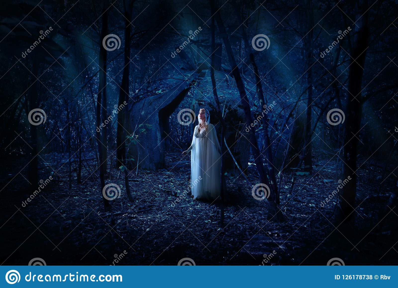 elven girl in night forest stock photo image of creature 126178738