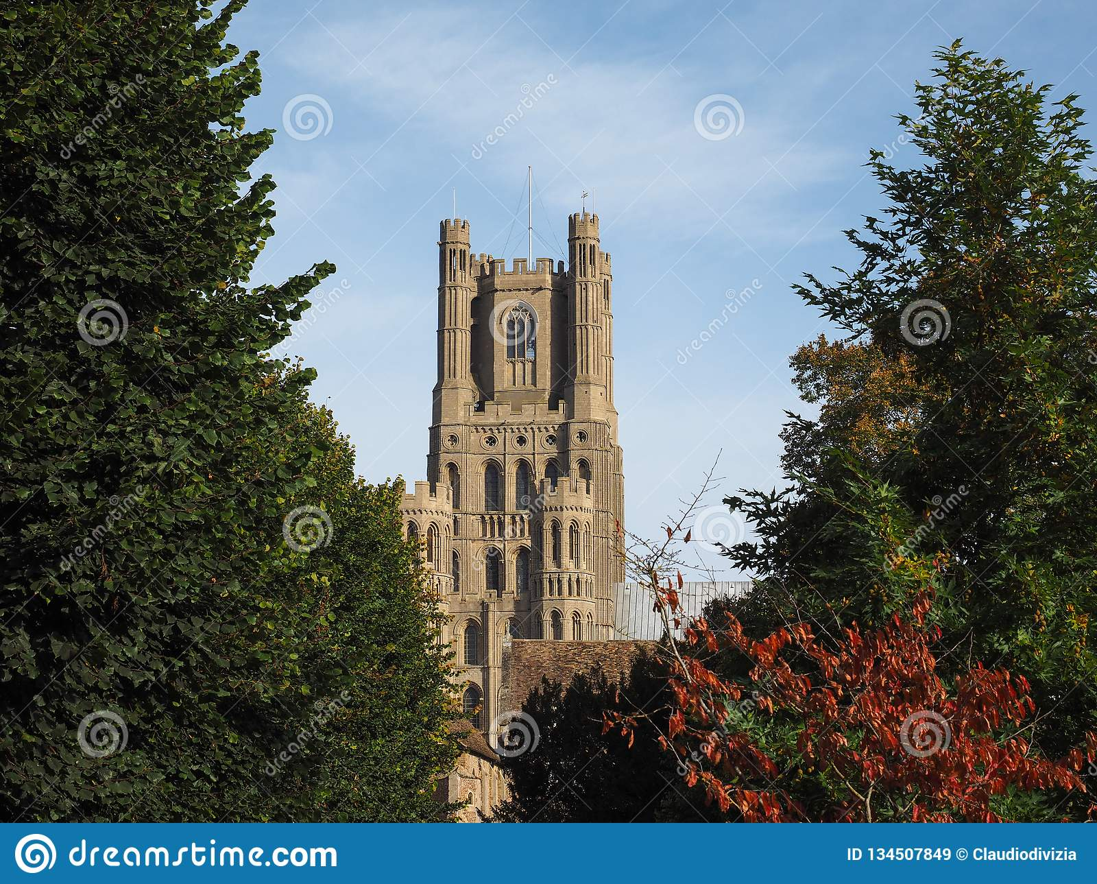Ely katedra w Ely