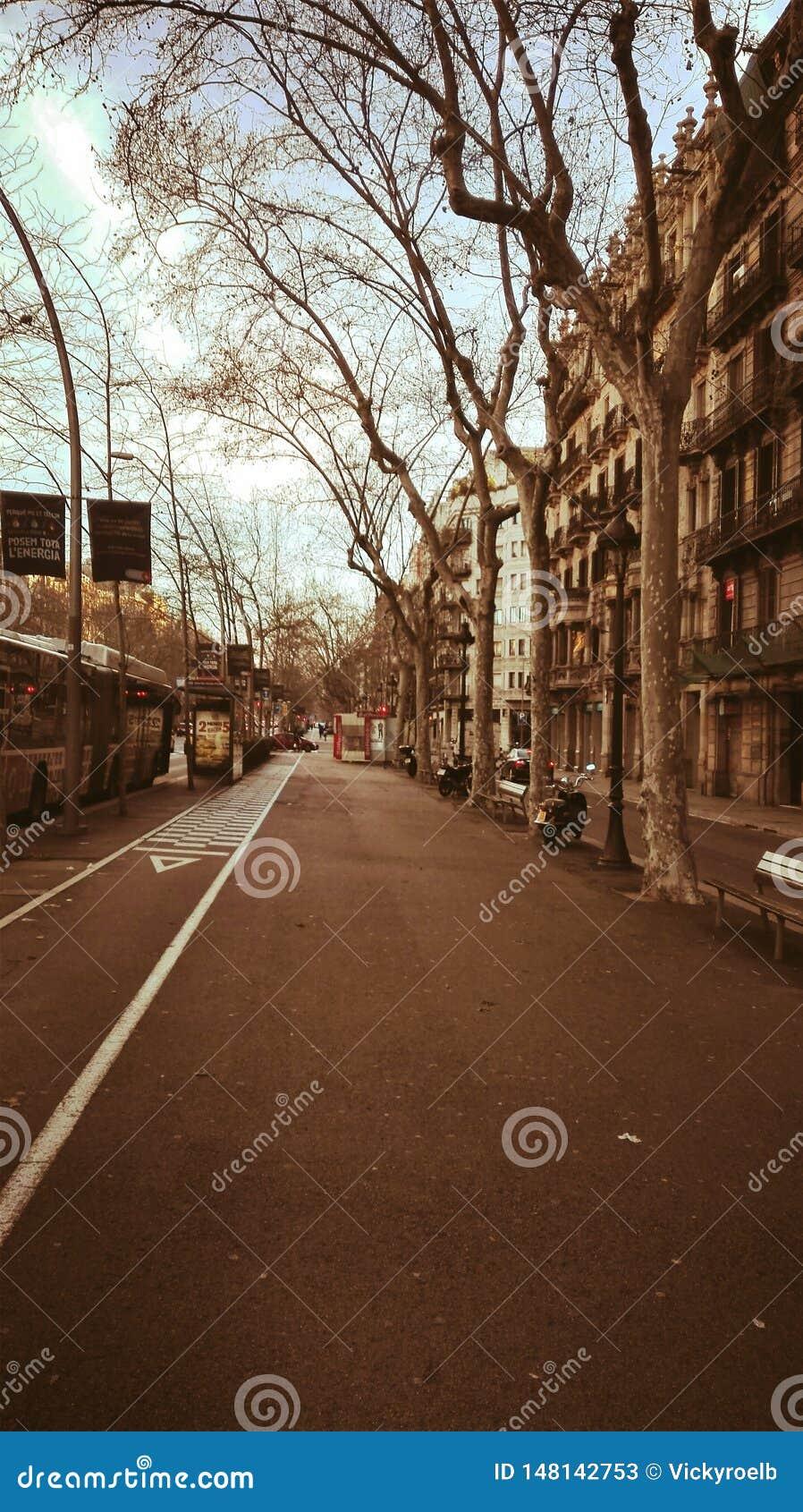 Em uma rua isolada em Barcelona