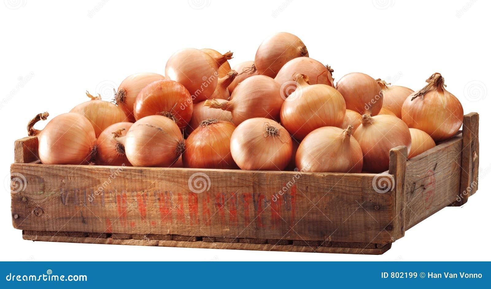 Embalaje de cebollas marrones