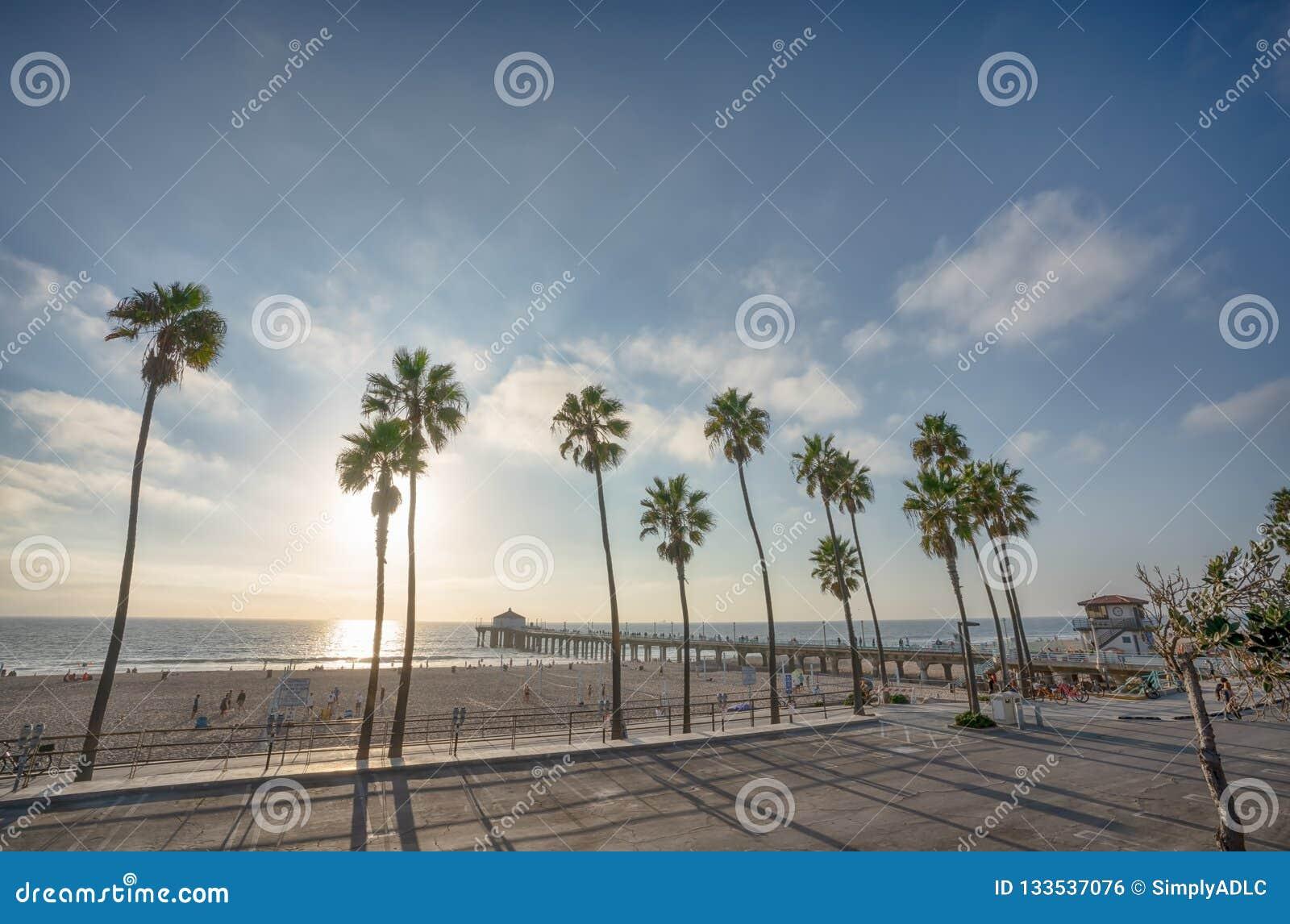 Embarcadero de Manhattan Beach con los árboles del aplm a lo largo de la playa en Californ