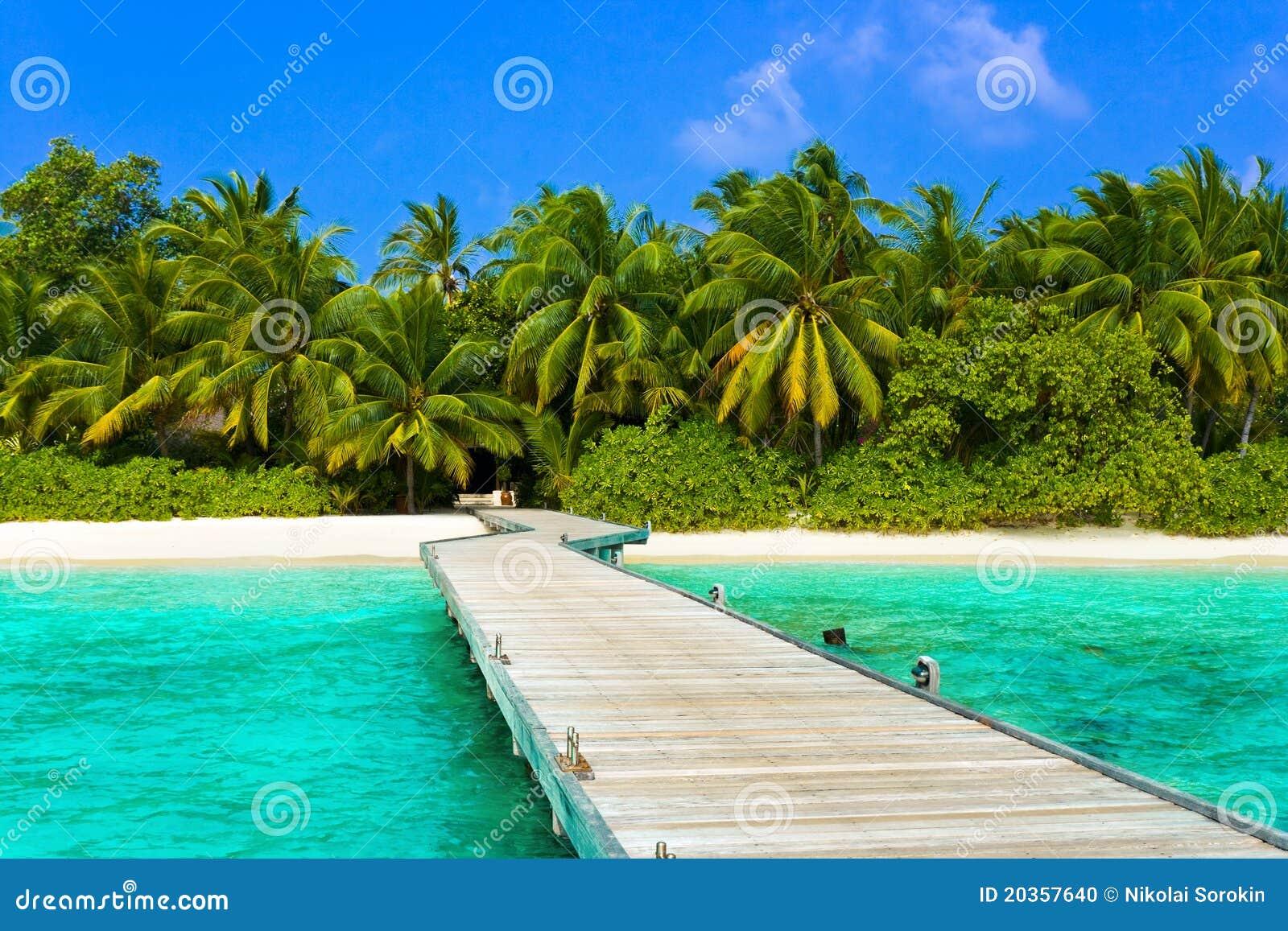 Embarcadero, playa y selva