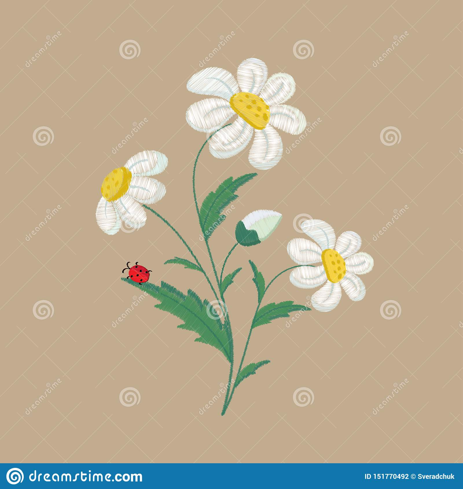 Embroidered chamomile flowers on a brown background. Vector illustration