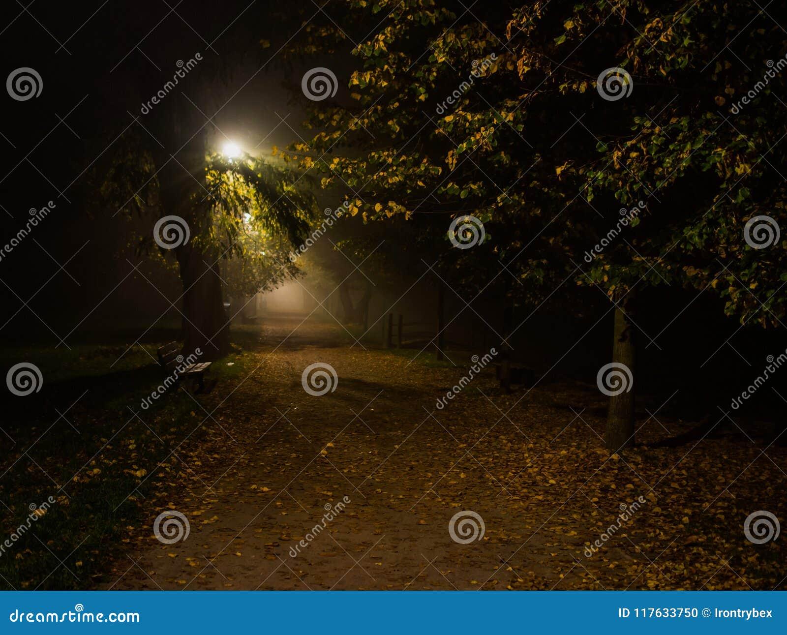 Embrumez en parc, nuit, le foyer mou, OIN élevée