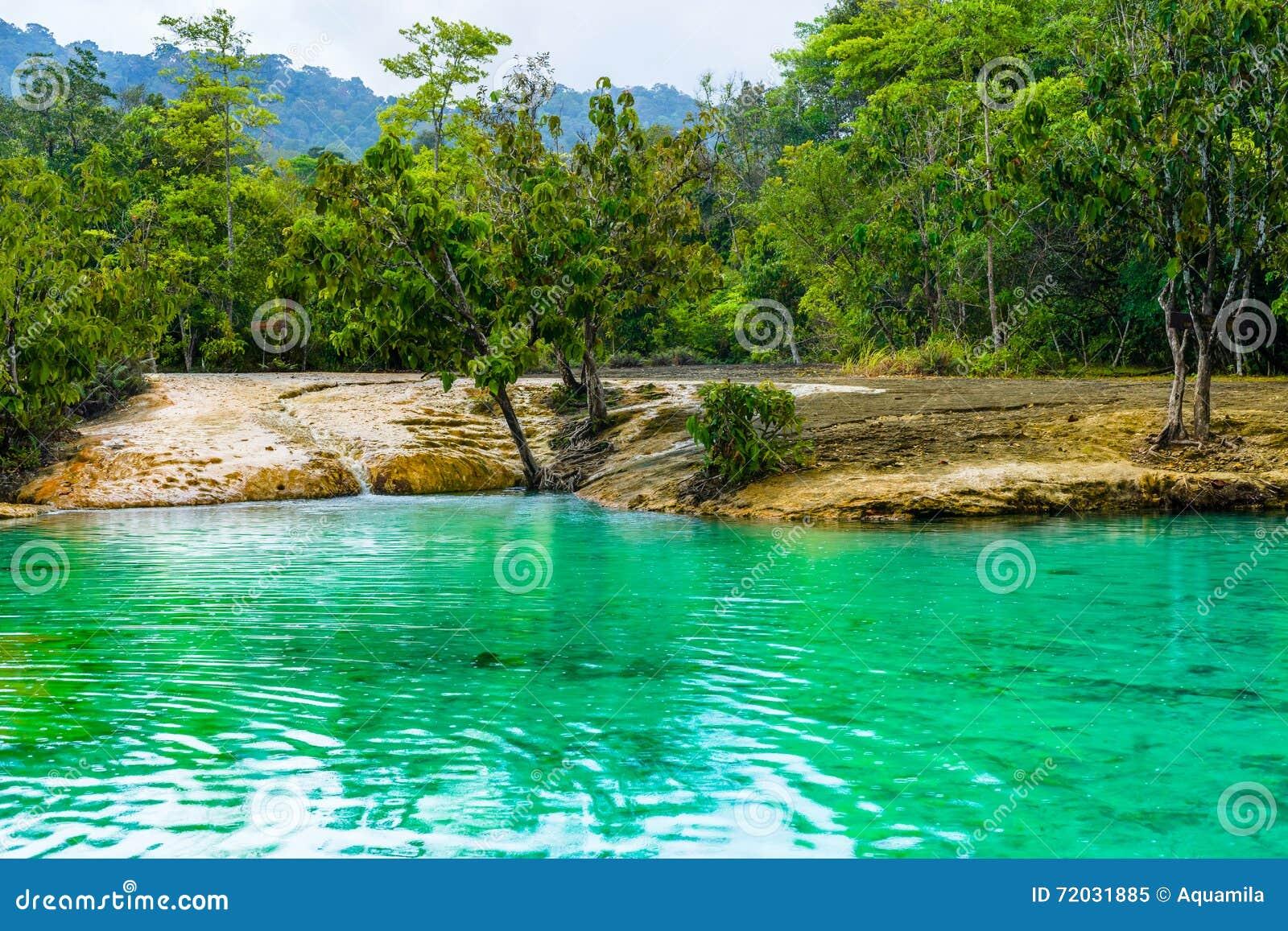 Emerald Pool alias Sa Morakot, Knall Khao Pra Khram-Naturschutzgebiet, Krabi, Thailand Grüne Farbtropischer See, Südostasien