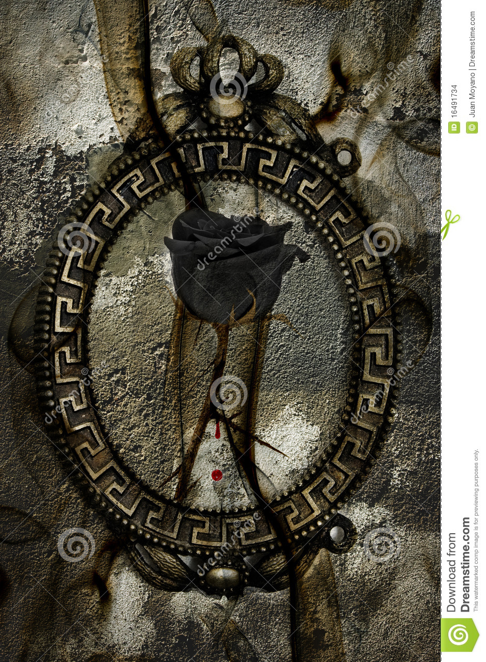 Emo Rose Stock Photo Image Of Abstract Designe Culture 16491734