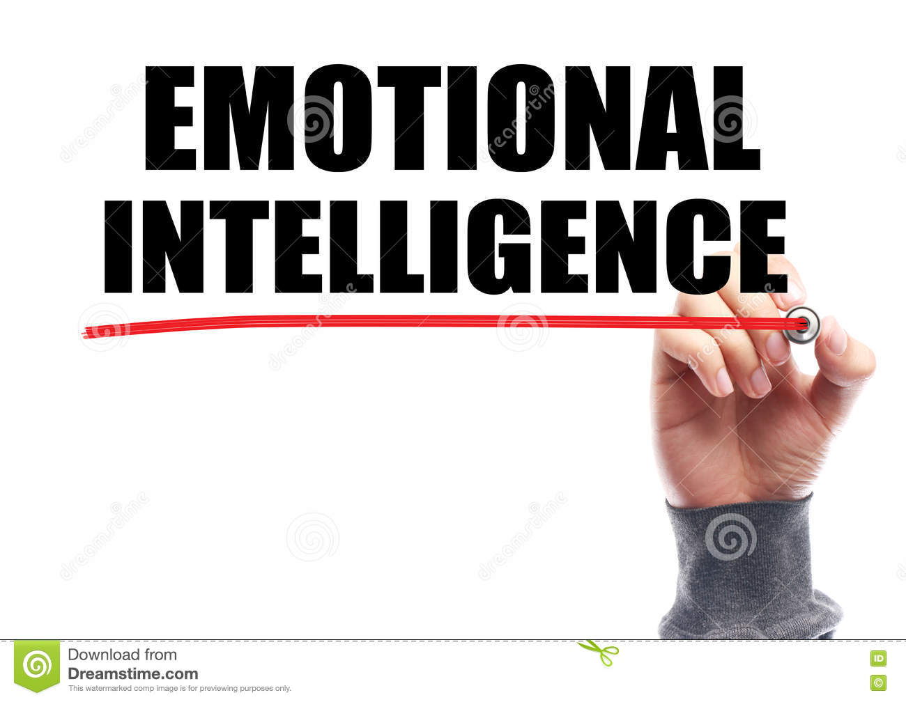 portfolio emotional intelligence and best way Leadership portfolio menu skip to content reflection on emotional intelligence emotional intelligence: a personal the best way to dispel it is to enter it.