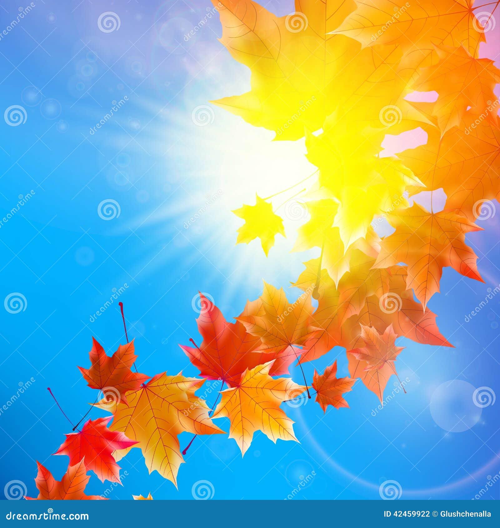 Empfindliche Herbstsonne mit grellem Glanz auf blauem Himmel