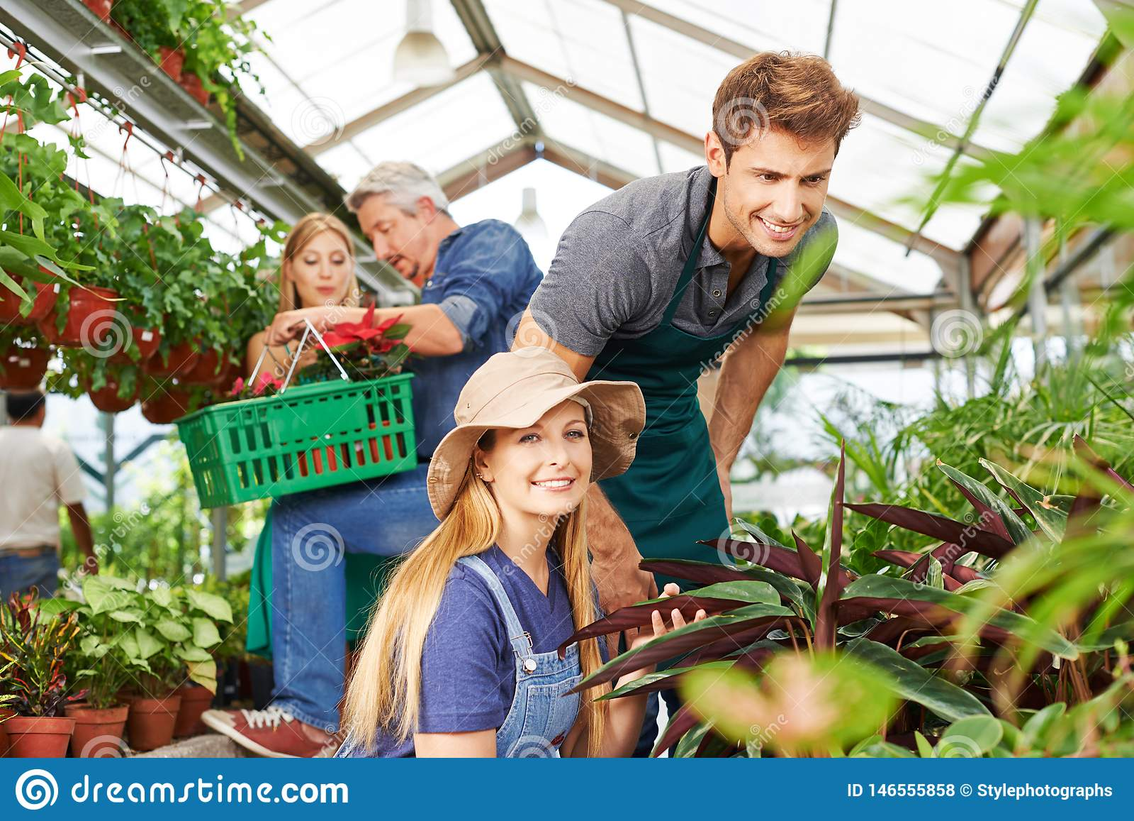 Empleados en el centro de jardinería en el cuidado de la planta