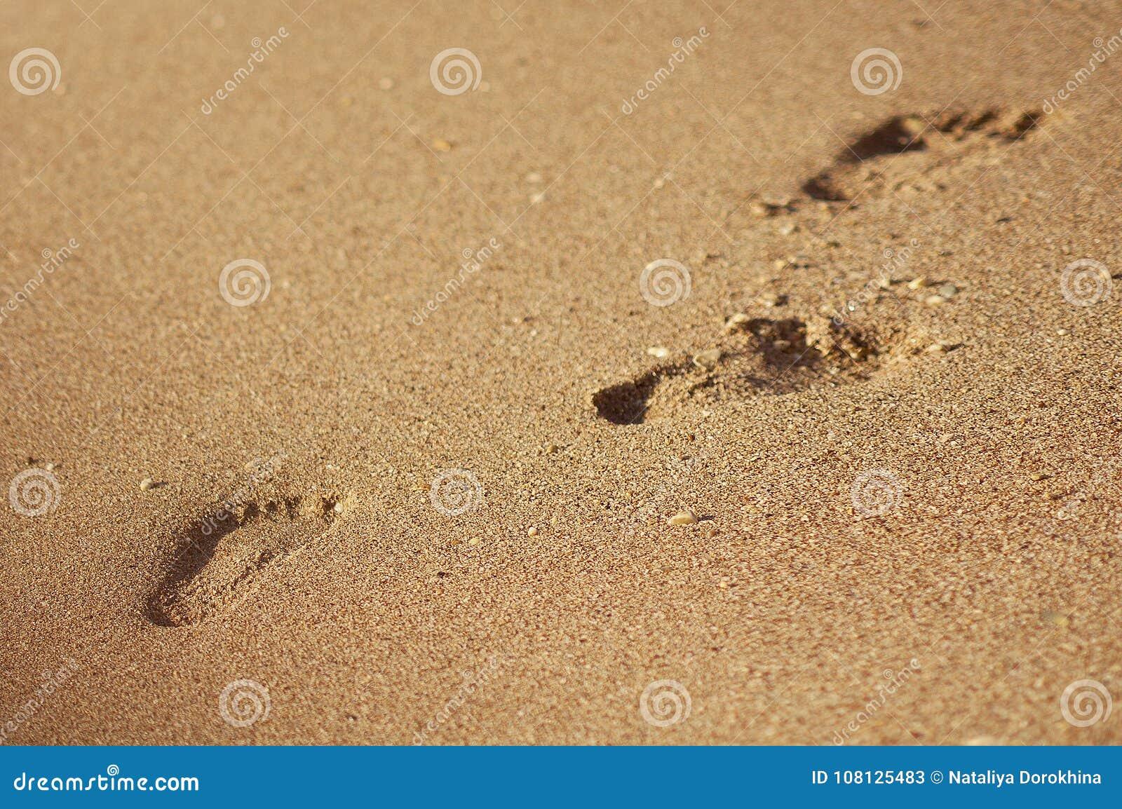 Empreinte de pas ou trace en plage de sable d été ou littoral en vacances - texture de fond - vue supérieure