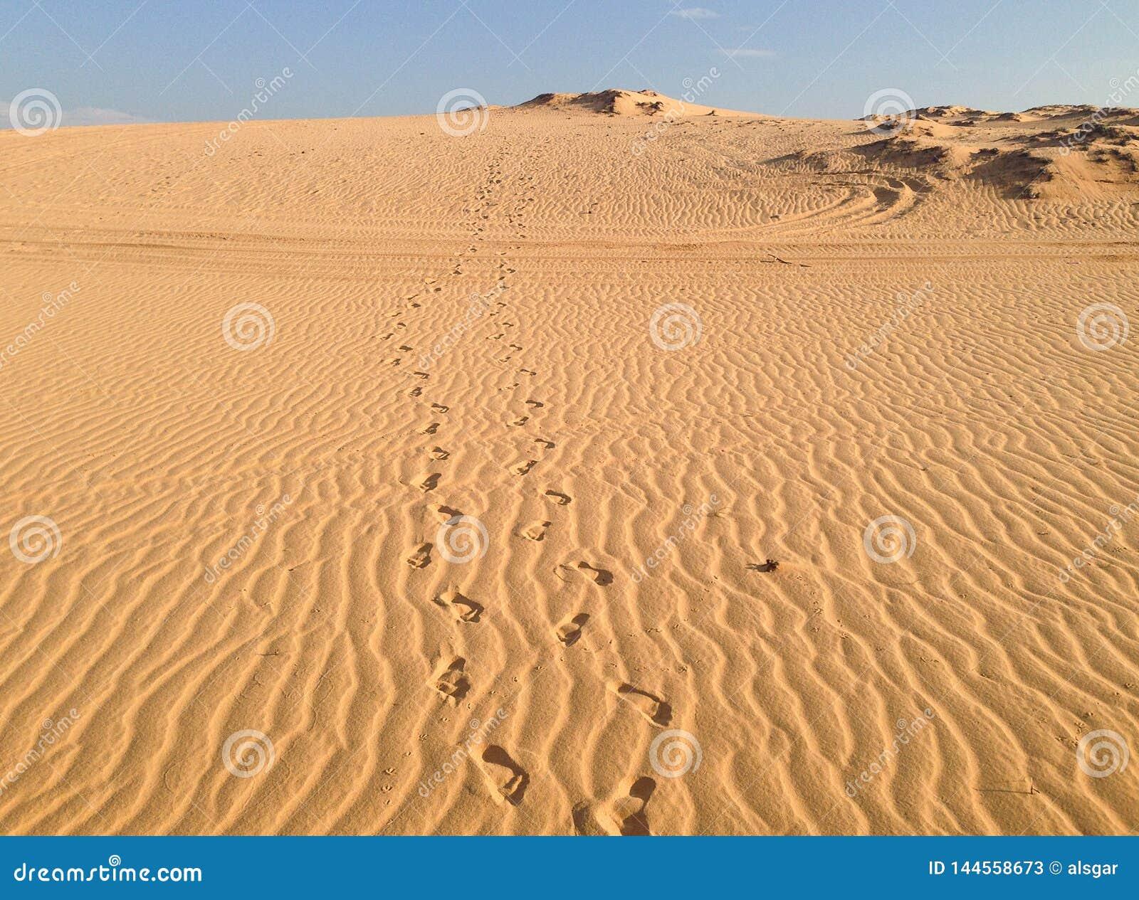 Empreintes de pas dans les dunes de sable blanches