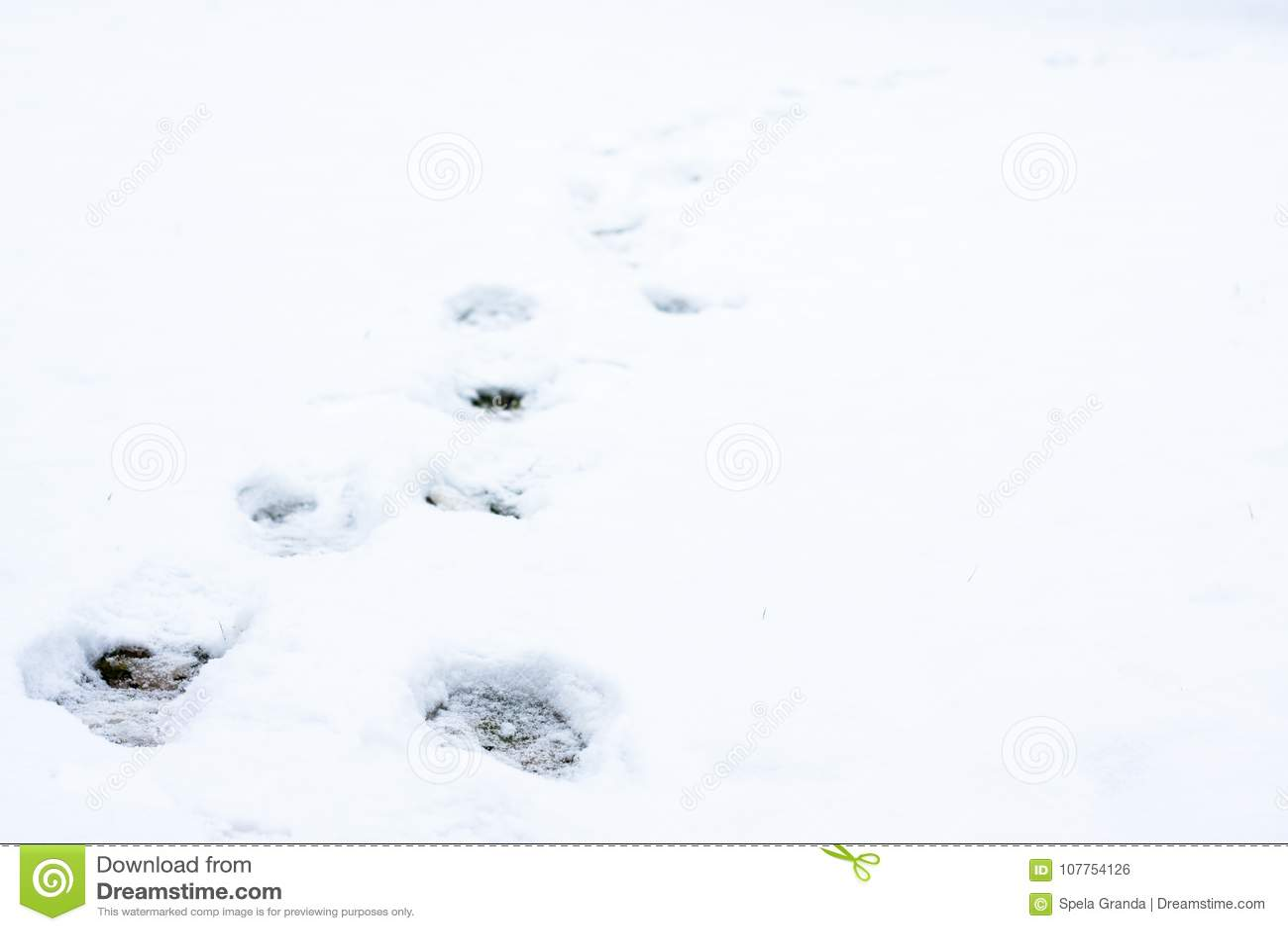 Empreintes de pas humaines dans la neige fraîchement tombée