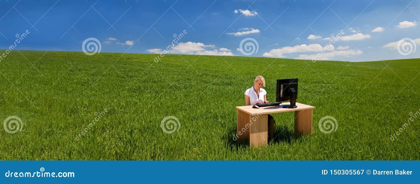 Empresaria del panorama que usa el ordenador en un escritorio en bandera verde del campo