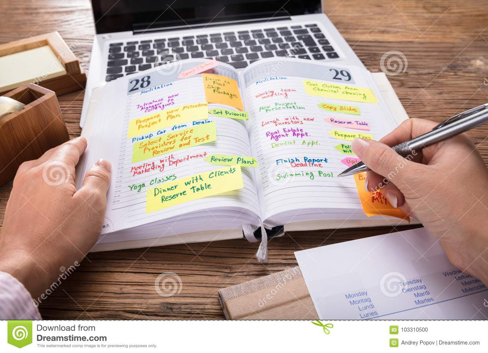 Empresario Looking At List del horario en diario