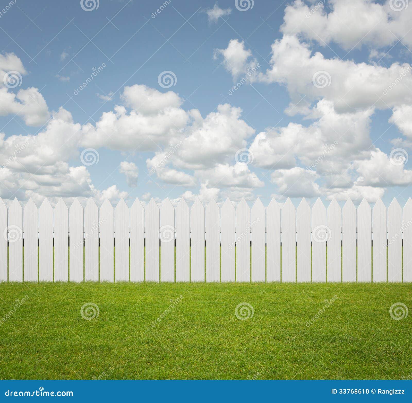 Empty Back Yard Background Stock Photo Image Of