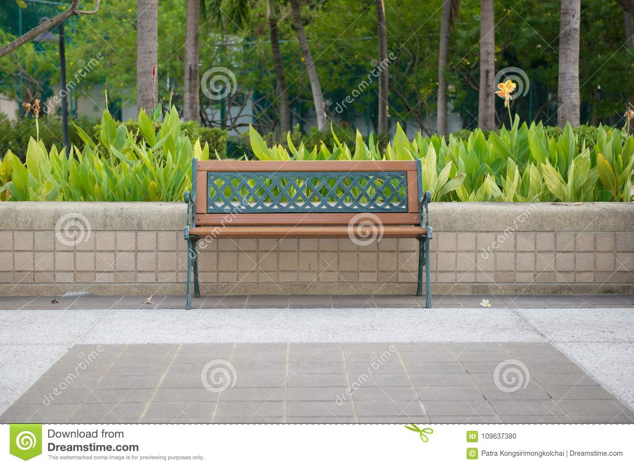 Empty Bench isolated in a public park with garden