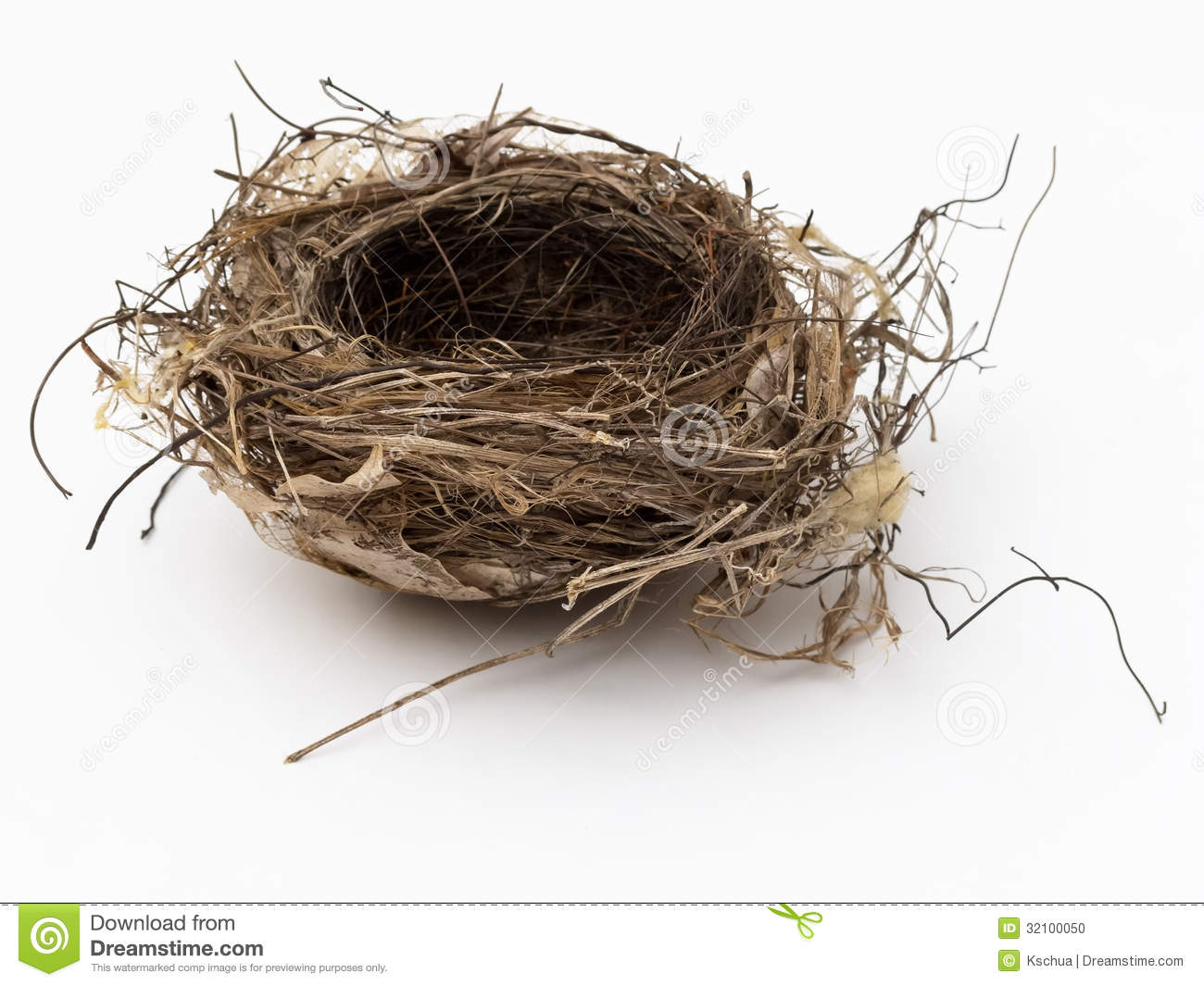 Empty Bird Nest Stock Photo Image 32100050