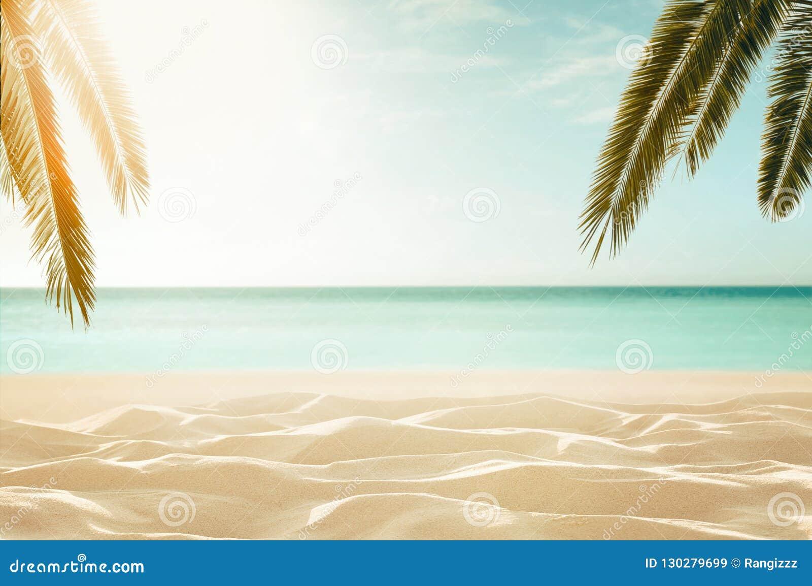 Empty, defocused tropical beach