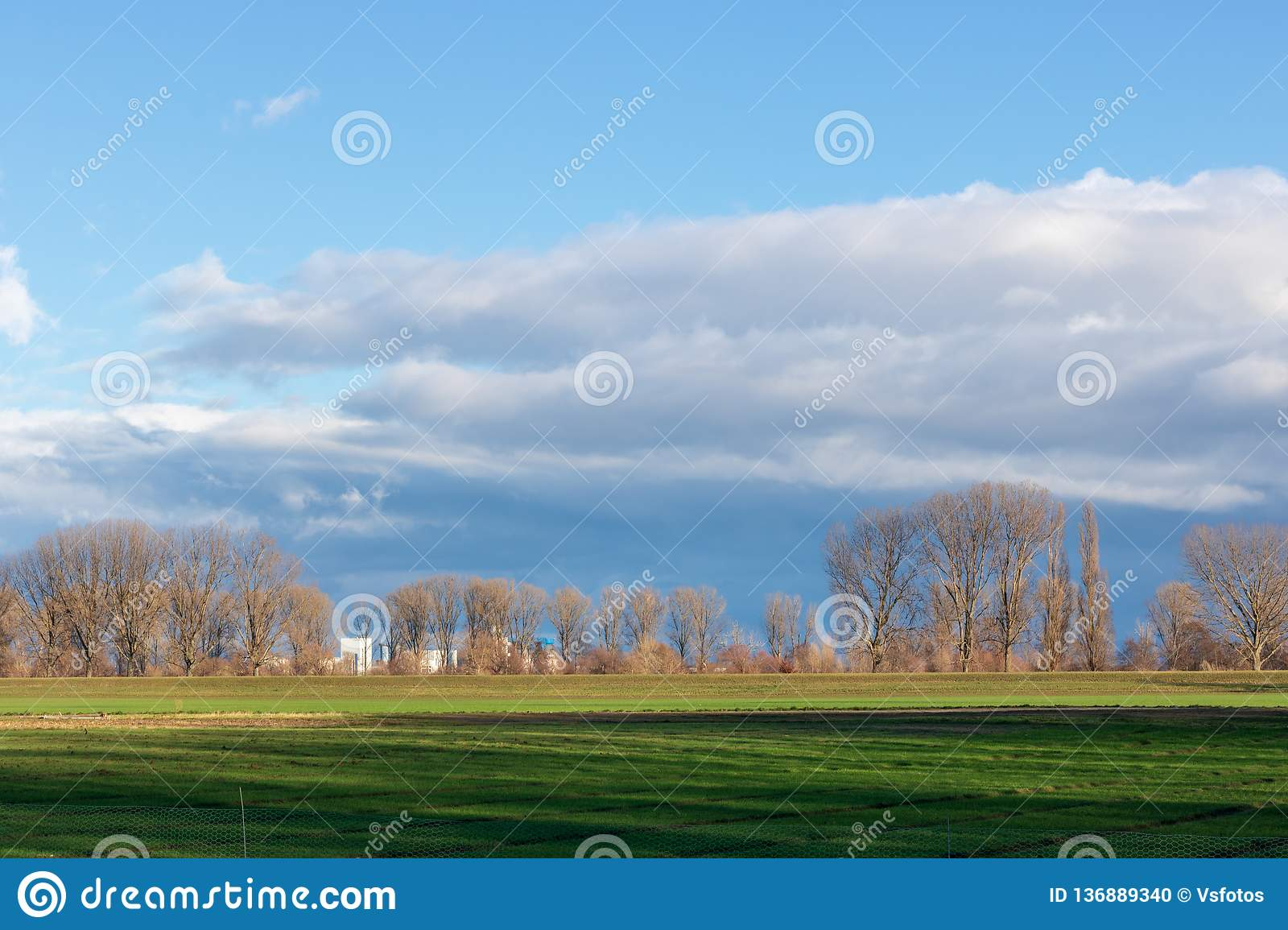 Empty fields in winter in countryside. nature in Frankenthal - Germany