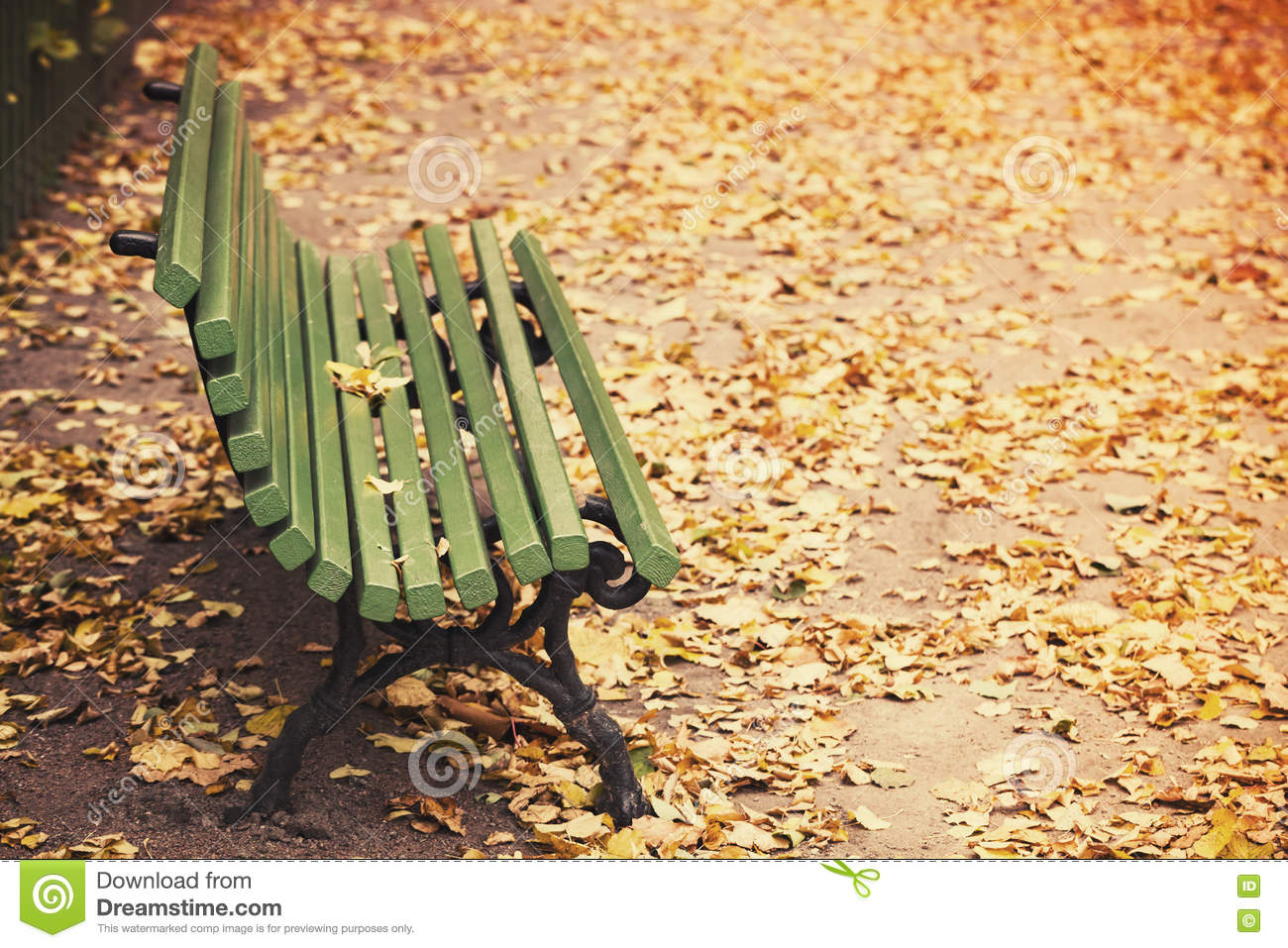 Empty Green Wooden Bench Old Style Stock Photo Image Of Beautiful