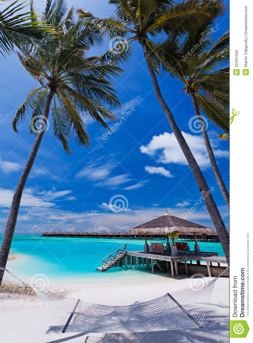 Empty Hammock Between Palm Trees On The Beach Stock Image