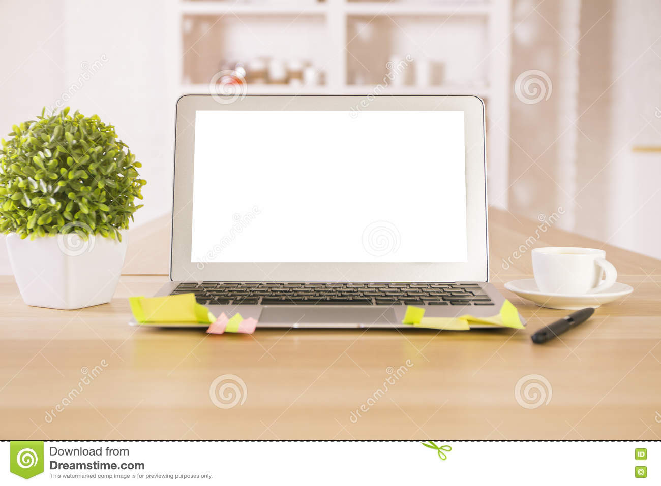 Empty laptop and plant