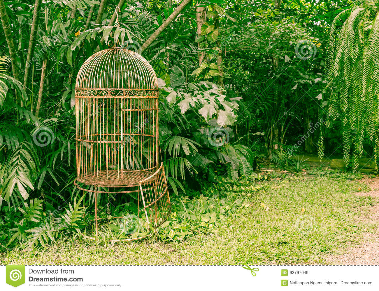 Empty Old Bird Cage In The Garden Stock Image Image Of Decoration