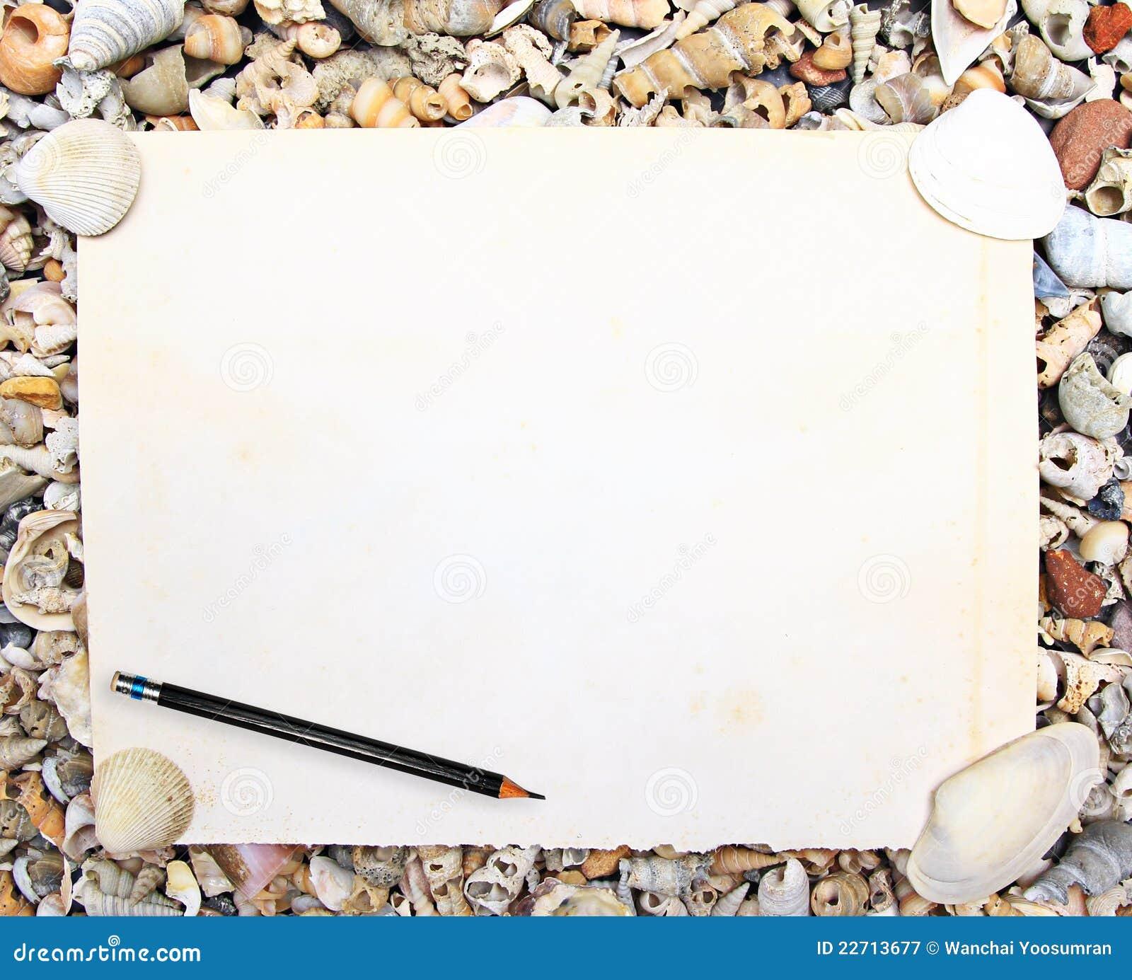 shell essay writing